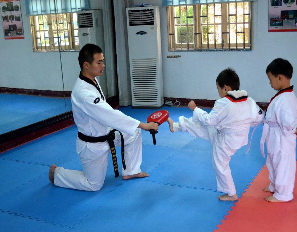 protection de Taekwondo